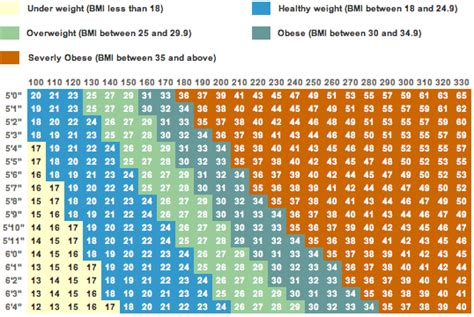 weight calculator bmi calculator