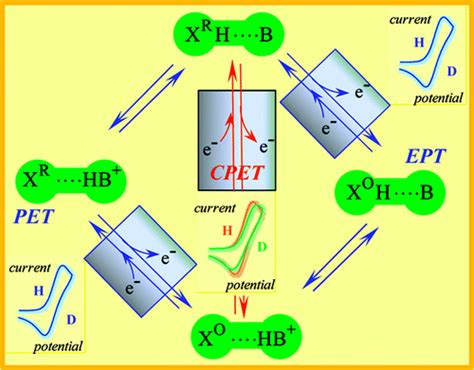 Proton Coupled Electron Transfer by Condensed Concepts 2010