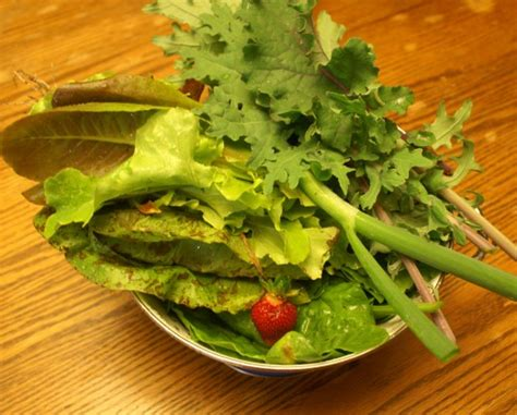 harvest monday greens and harvest monday greens and