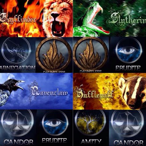 which house are you in harry potter harry potter divergent which house faction do you belong in i m a nerd and i know