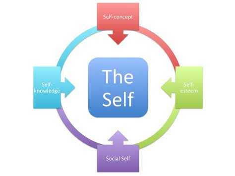 possible selves psychology file the self jpg