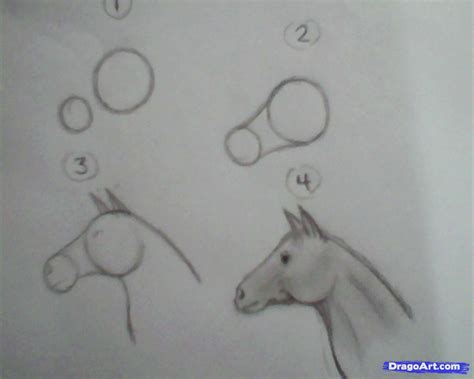 1 Minute Sketches by One Minute Drawing Step By Step Farm Animals