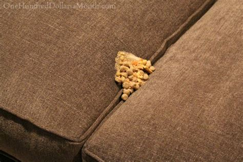 vomit on couch lucy the puggle dog