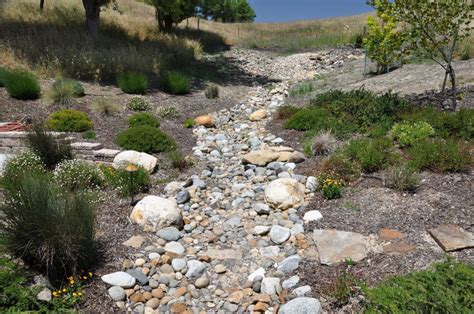 creek bed meandering dry creek bed