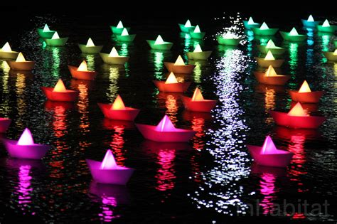 large scale light festival in us casts a magical