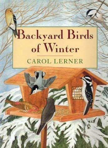 winter birds books 13 best images about creation day 5 fish birds