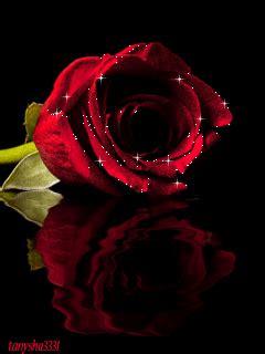 imagenes religiosas moviendose hermosas im 225 genes de rosas con movimiento de amor