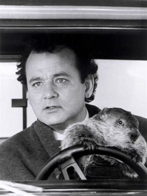 groundhog day actor strategies does your feel like groundhog day