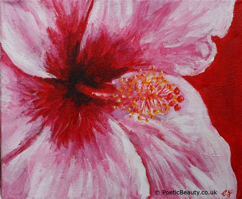 acrylic painting flowers poetic a celebration of in all its forms