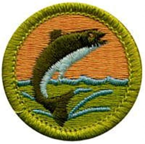 game design merit badge pdf 1000 images about bsa merit badge resources on pinterest