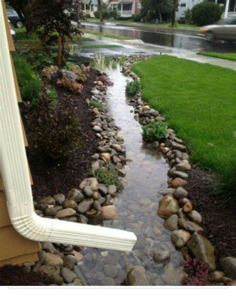 sump pump for backyard drainage best 25 sump pump ideas on pinterest yard drainage