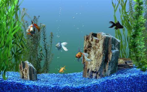 goldfish themes for windows 7 cool aquarium