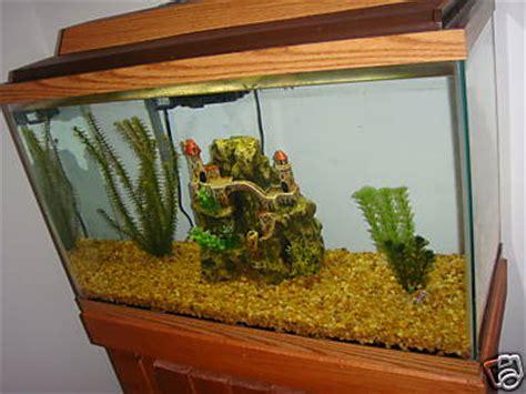 gallon aquarium fish tank  accessories included