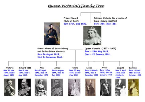 printable queen victoria family tree family tree by reegs teaching resources tes