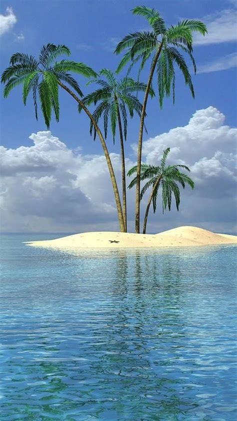25 best ideas about palm 25 best ideas about palm tree island on kiwi