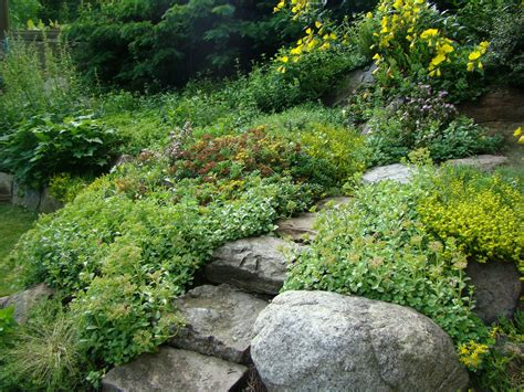 rock garden decor decorating ideas