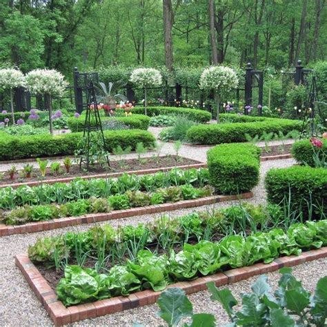 formal garden layout 25 best ideas about small vegetable gardens on