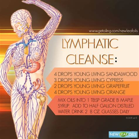 Aroma Lymph Detox by 17 Best Images About Nature S Medicine On