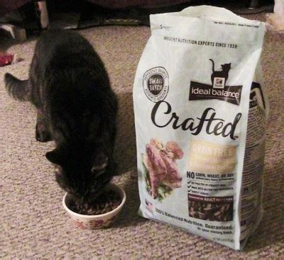 hill s ideal balance food hill s ideal balance crafted cat food inspiredbycrafted