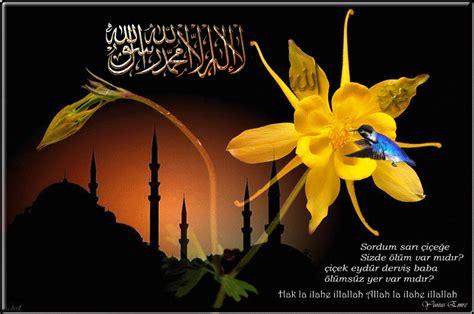 infoku kumpulan kata kata mutiara islami terbaik