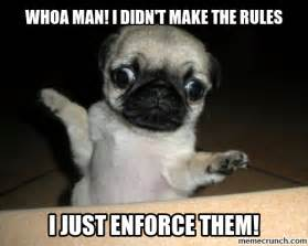 Pugs Meme - pug memes related keywords suggestions pug memes long