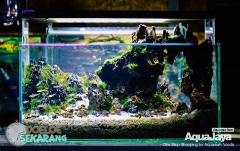 membuat lu aquascape led cara membuat aquascape step by step aquajaya