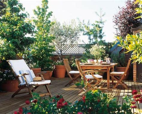 pflanze als sichtschutz 861 balkon blumen immergr 252 ne pflanzen fr 252 hling k 228 lte