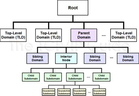 diagram of a family tree chart family tree diagram blank pictures