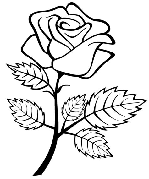 easy for flower drawing designs drawing for how to