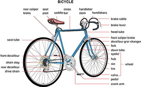 Sepeda Simple Bicycle bicycle gear shifting diagram bicycle free engine image