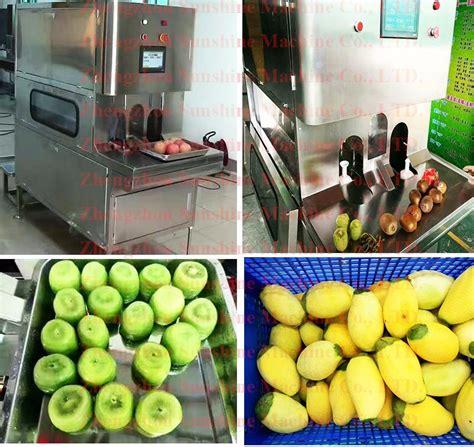 china automatic computer control mango processing fruit
