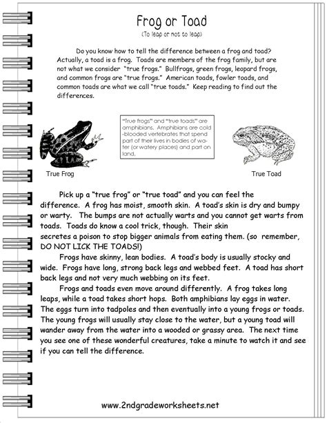 Information text activities http www 2ndgradeworksheets net infotext