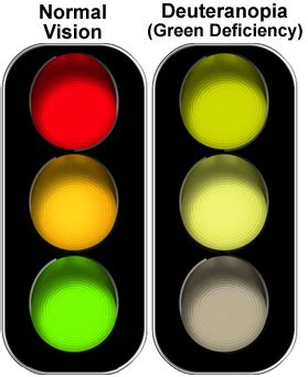 most common form of color blindness deuteranopia vision