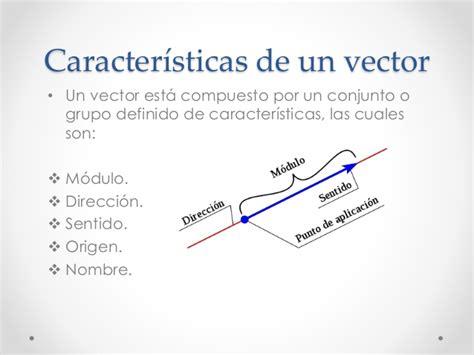 Imagenes Vectoriales Y Sus Caracteristicas | vectores