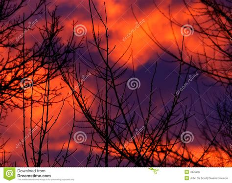 pattern nature abstract sunrise abstract nature pattern royalty free stock