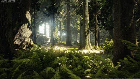 artstation ue conifer forest  willi hammes