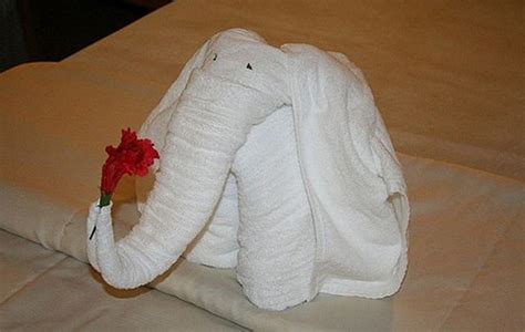 1000 images about towel origami on towels