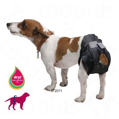 comfort dogs certification savic comfort dog nappies free p p 163 29 at zooplus