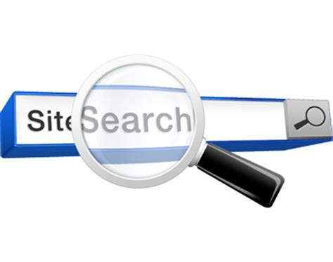 Finding Websites Using Site Search In Analytics Amazee Metrics