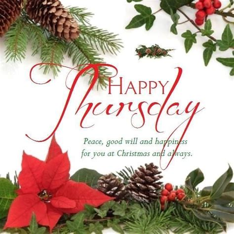 happy thursday christmas pictures photos and images for