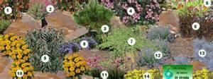 creer une rocaille rocaille de fleurs rocaille plantes