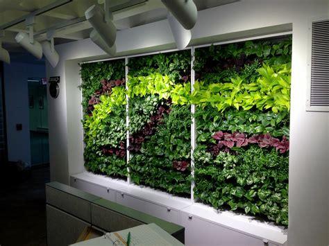Indoor Plants Nyc | indoor plants decorations 28 indoor plants nyc indoor
