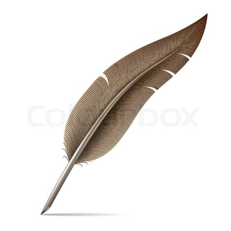 Fn A Quill image of feather pen on white background stock vector colourbox