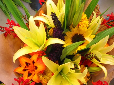 flower arrangement free flower images and stock photos