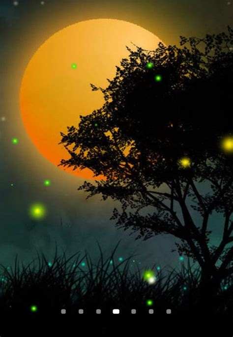 fireflies   wallpaper   android
