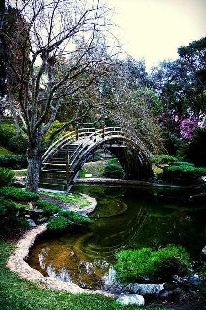 Los Angeles Botanical Garden Botanical Gardens Ca Usa And Los Angeles On Pinterest