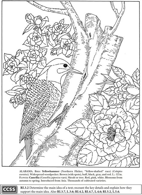 amazing birds coloring book books 92 coloring pages of beautiful birds coloring