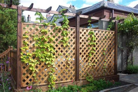 Decorative Garden Fencing Ideas Fascinate Decorative Garden Fencing Fence Ideas