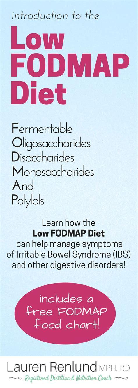 Low Fodmap Detox by Best 25 Elimination Diet Recipes Ideas On The