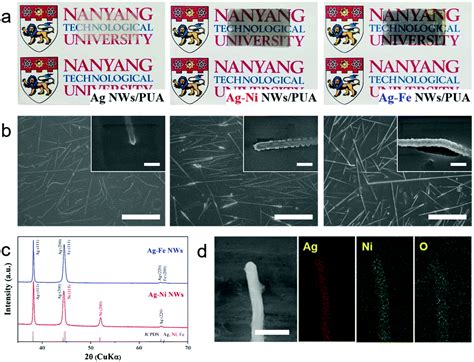 xrd pattern of niooh coaxial ag base metal nanowire networks with high